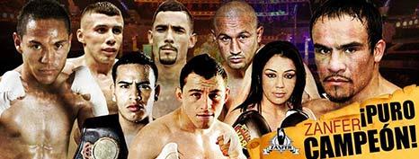 zanfer-boxing