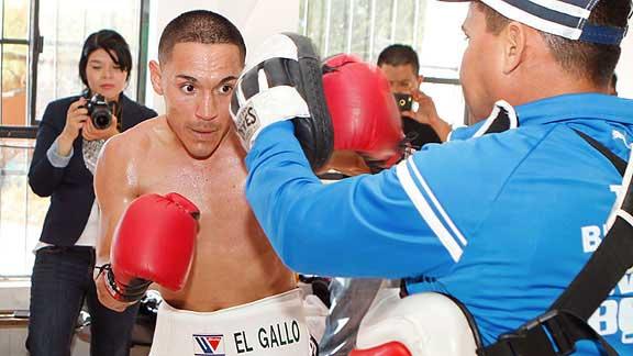 "Francisco ""Gallo"" Estrada"