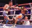 "Foto Zanfer Boxing: ""Chihuas"" Rodríguez vs Fajardo"