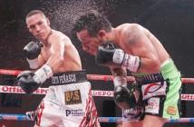 """""""Gallo"""" Estrada vs """"Tyson"""" Márquez"""