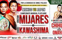 Cristian Mijares vs  Shohei Kawashima