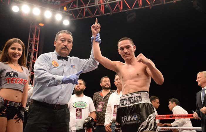 "Juan Francisco ""Gallo"" Estrada (Zanfer Boxing)"