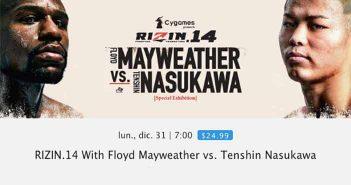 Mayweather vs. Nasukawa