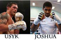 Usyk vs Joshua
