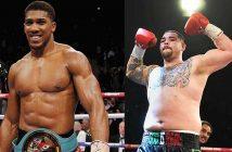 Anthony Joshua vs Andry Ruiz Jr.