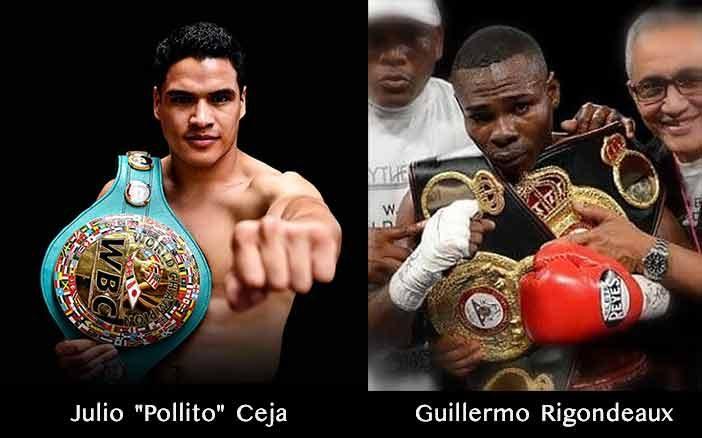 """Julio """"Pollito"""" Ceja vs Guillermo Rigondeaux"""