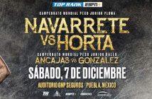 Navarrete vs Horta