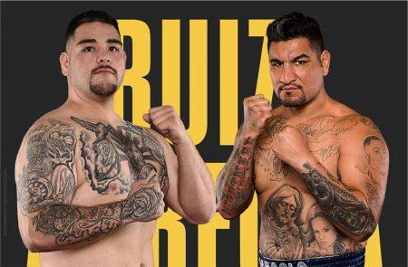 Andy Ruiz vs Chris Arreola